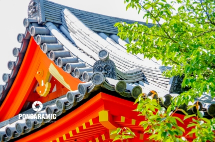 Pagoda Roof, Kyoto (Watermarked)